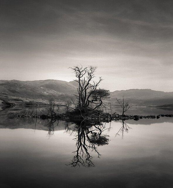 Loch Assynt Reflection by David Bowman
