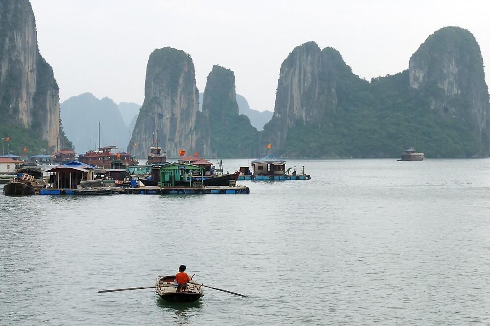 Ha Long Bay, Vietnam by natureshues
