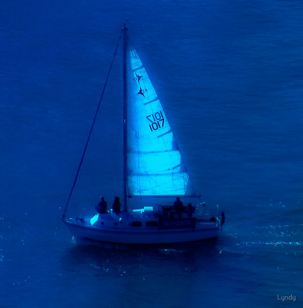 Sailing by moonlight by Lyndy