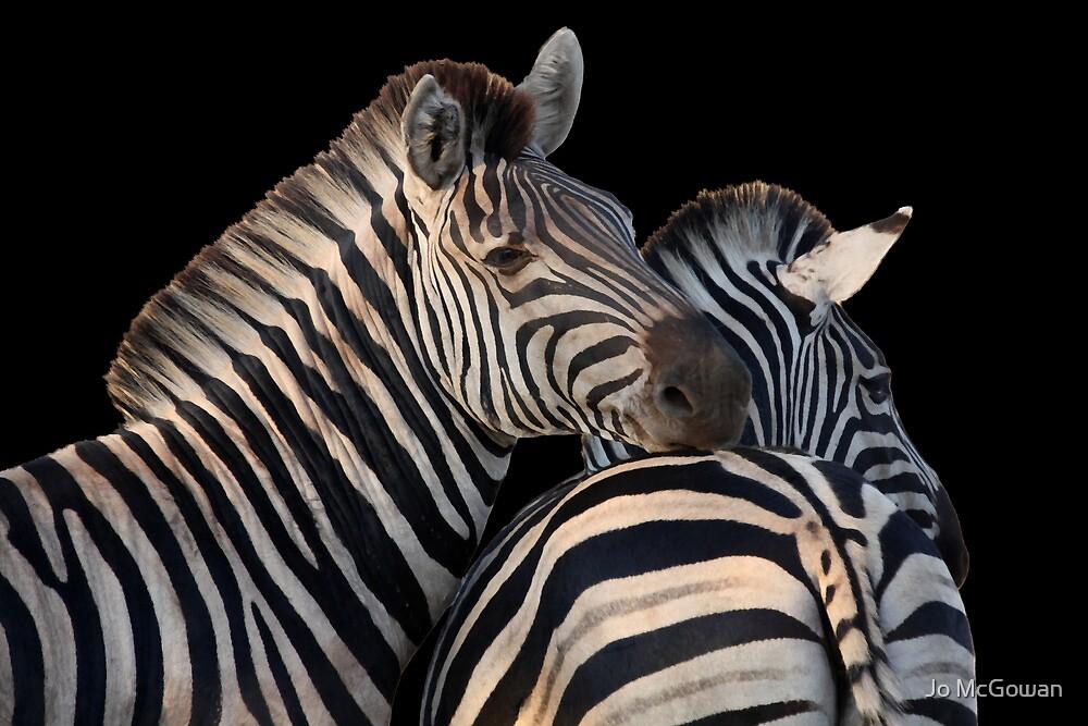 Zebra friends by Jo McGowan