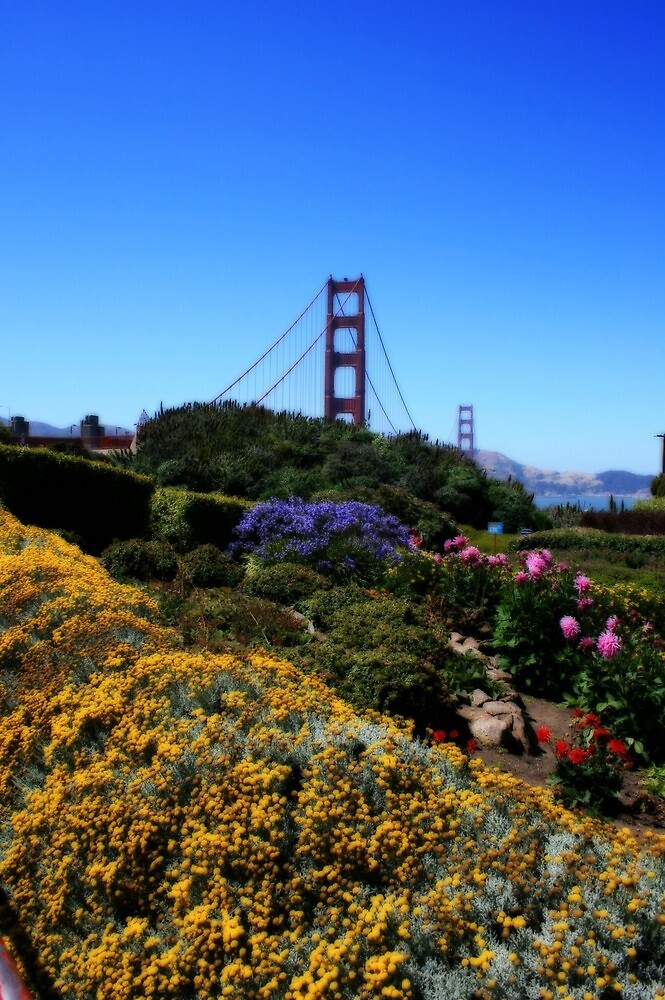 Garden and Golden Gate by Terence Russell