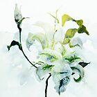 bride's bouquet by clemfloral