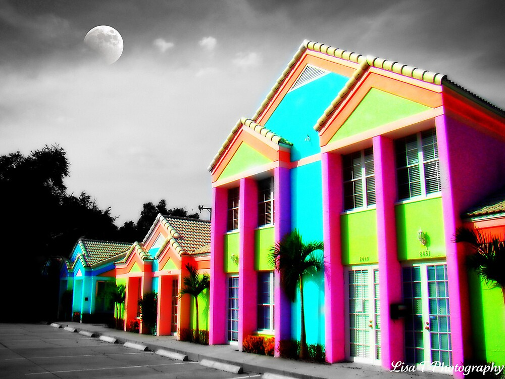 Hammer House of Colour by Lisa  Trans