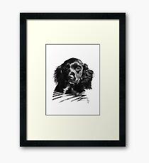 Max. Framed Print