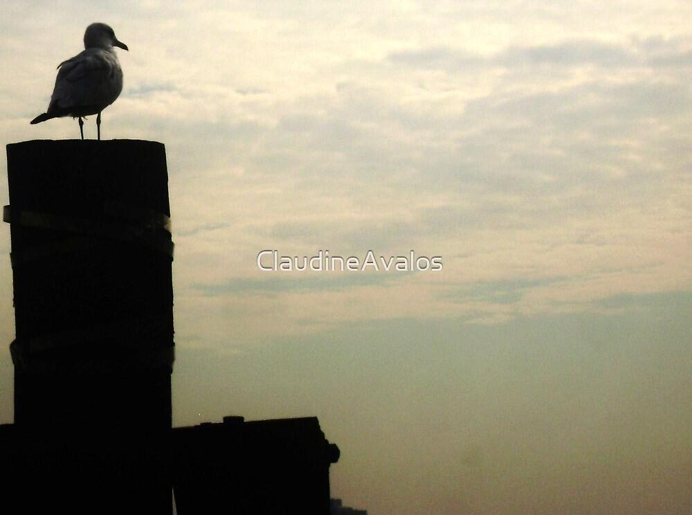Gazing into the horizon by ClaudineAvalos