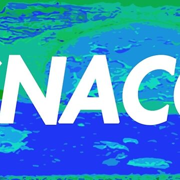 Snacc Inverted Box Logo by MrErig