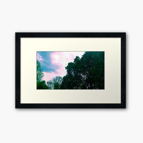 Trees and Colorful Sky Nature Scene Framed Art Print