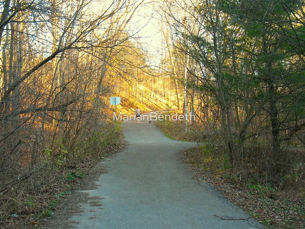 Sunlit Jog by MarianBendeth