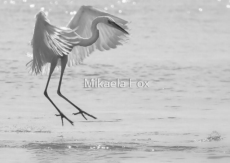 'Graceful' by Mikaela Fox