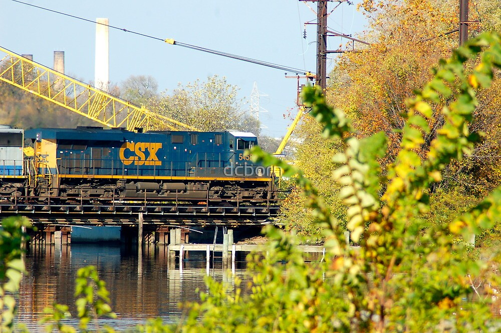 Train in Anacostia  by dcborn