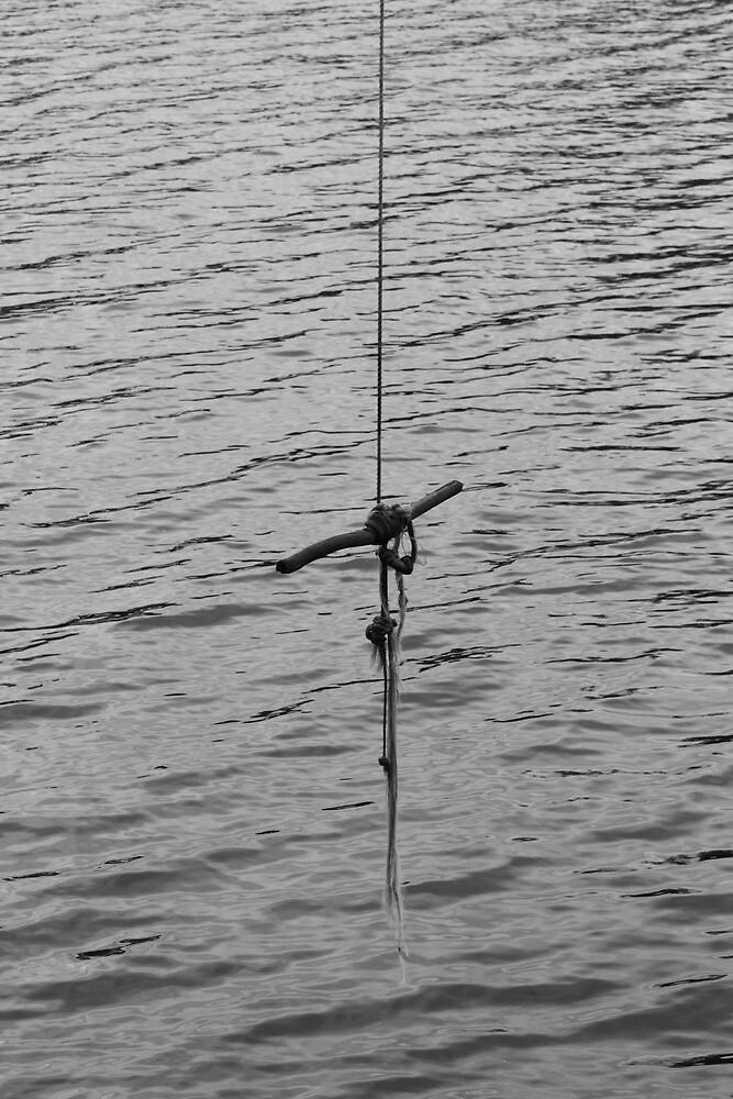 Rope Swing by FreezingTime