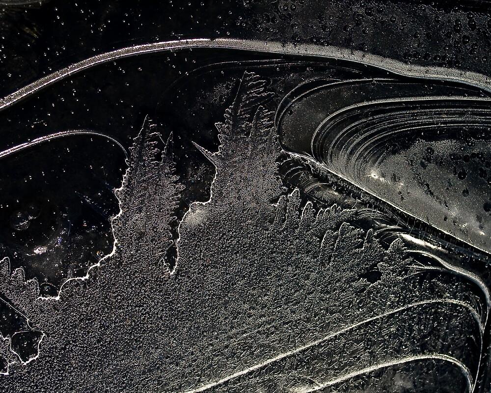 Frozen Winter Scene by Andrew Bernier