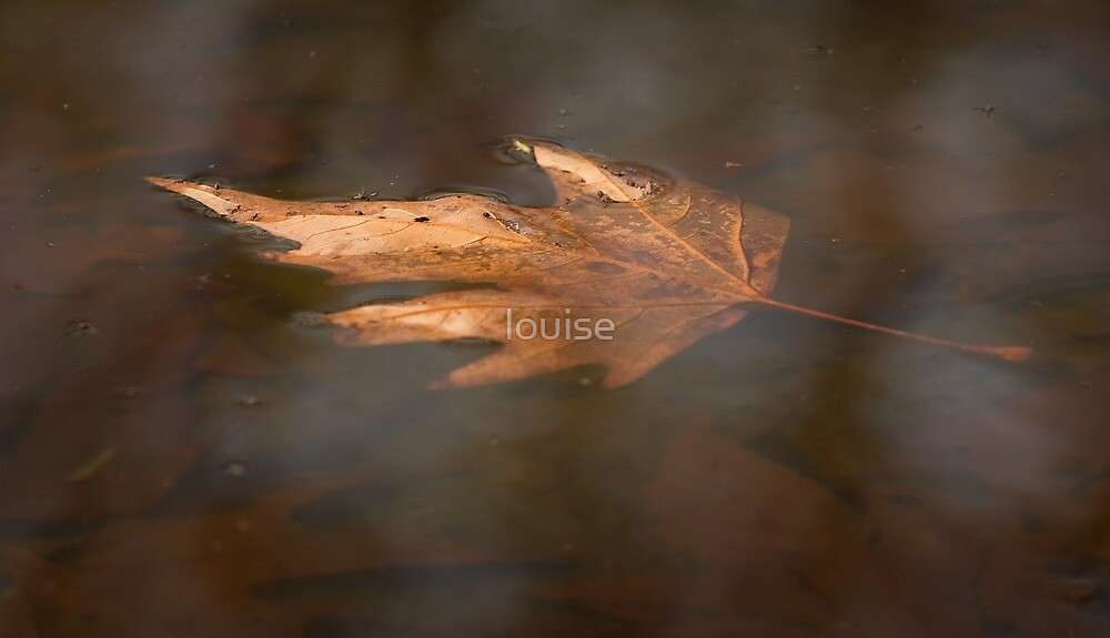 Partial Submersion by louise