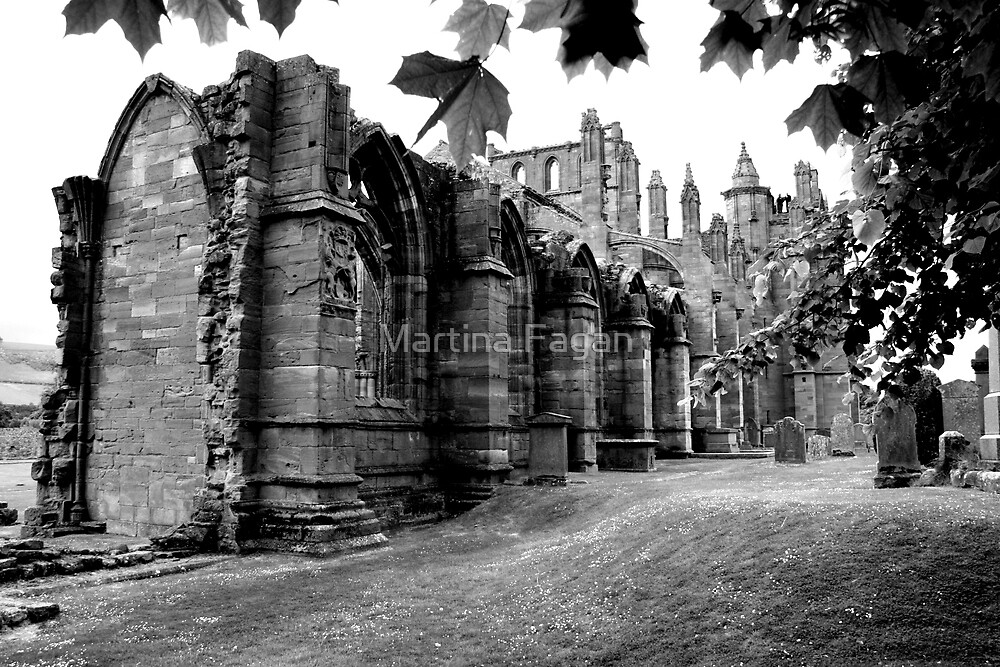 Melrose Abbey by Martina Fagan