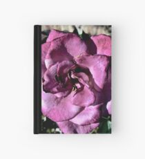 Winter Park Baby Pink Rose Hardcover Journal