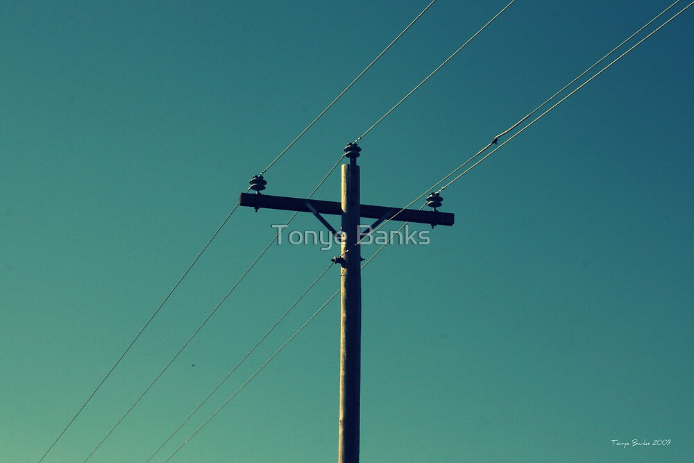 Simple Electricity by Tonye Banks