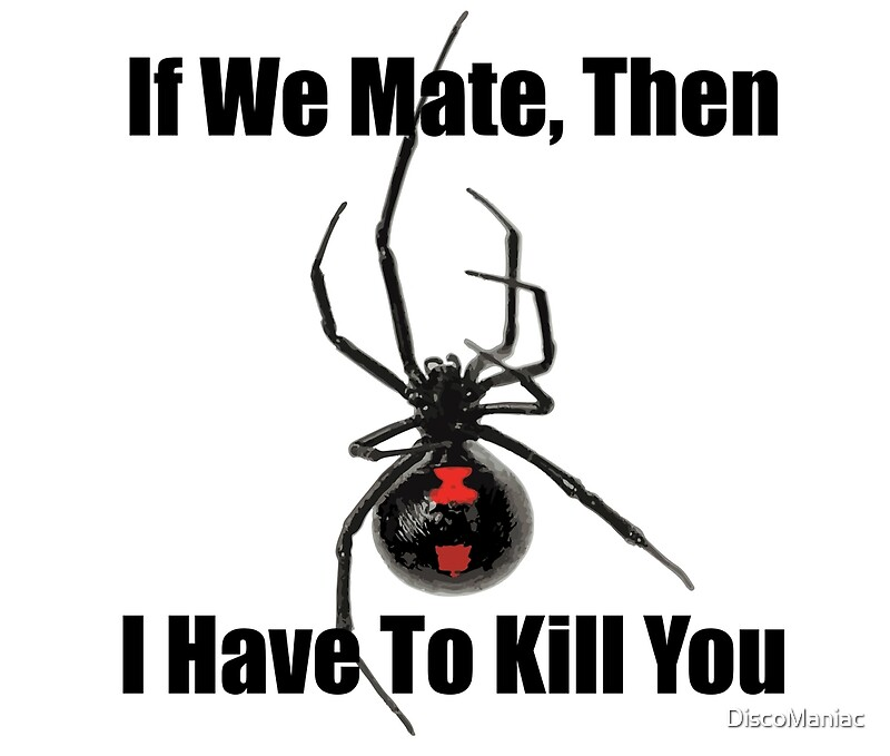 can black widow spiders kill you - 800×679