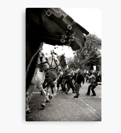 All The Kings Horses... Canvas Print
