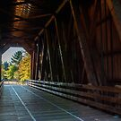 Inside The Bridge by Susan Vinson