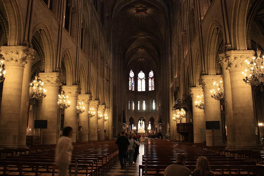Notre Dame by MrSandblast