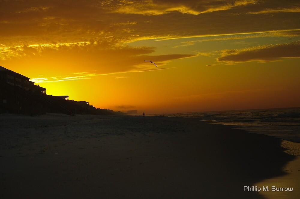 Morning Flight by Phillip M. Burrow