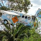 "Public Art - Flying Campervan ""Emus on a Plane"" by Marilyn Harris"