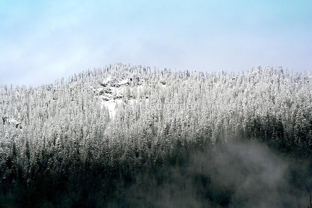 Season's First Mountain Snow by starlitewonder