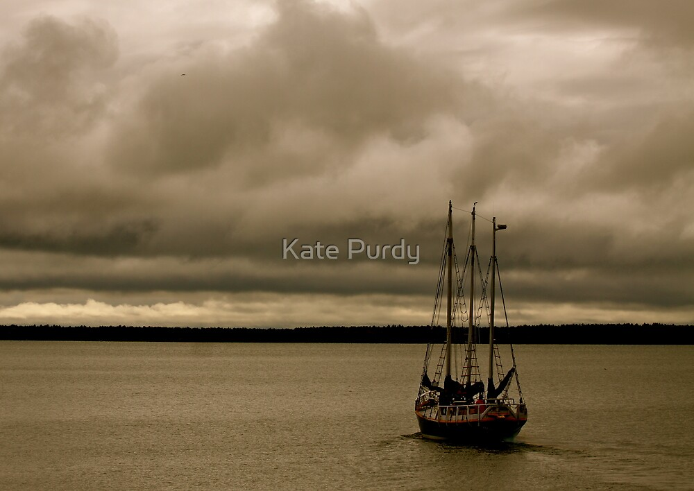 Come Out of the Storm by Kate Purdy