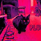 PLUSH by OTOFURU