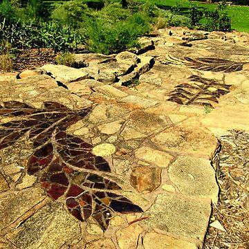 Acacia Steps - Kings Park, Perth by RainyMaree