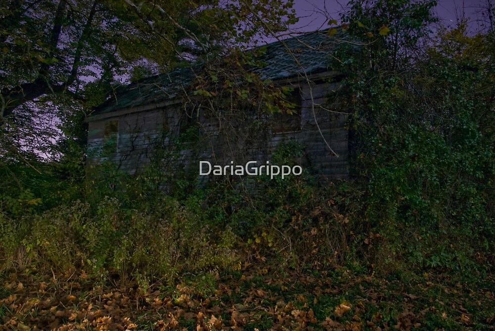 Abandoned Creepy house at night by DariaGrippo