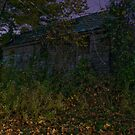 Abandoned Creepy house at night by DariaGrippo