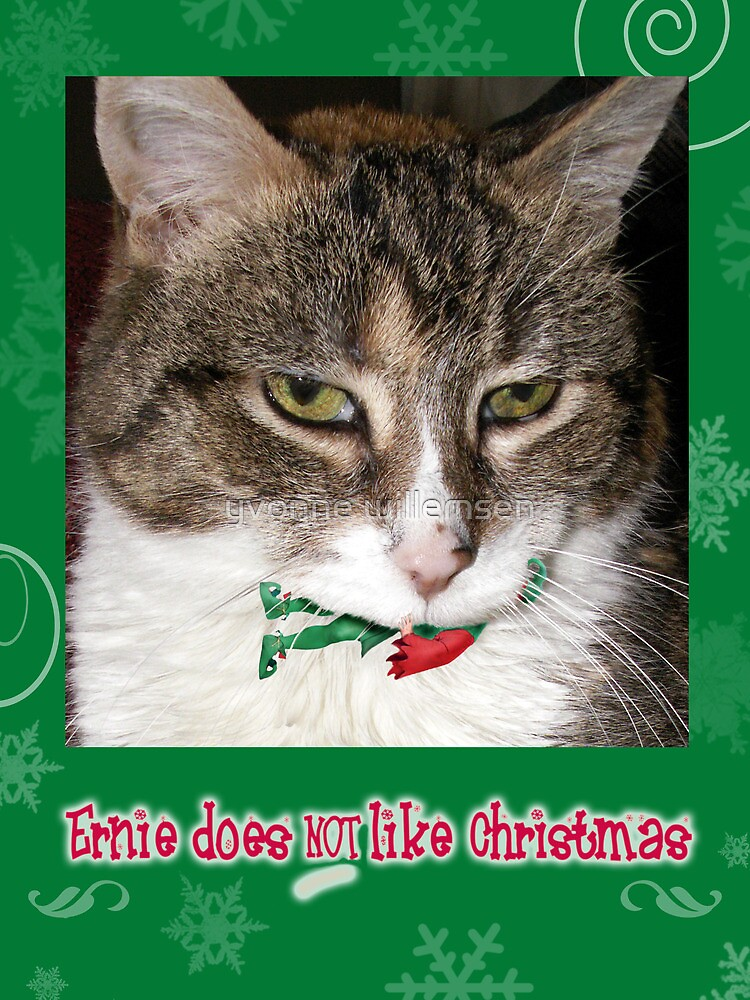 Ernie does not like Christmas by yvonne willemsen