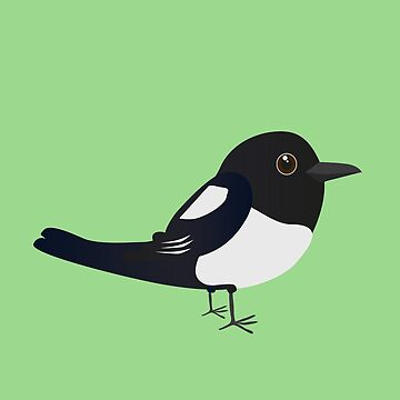 Cute magpie by Bwiselizzy