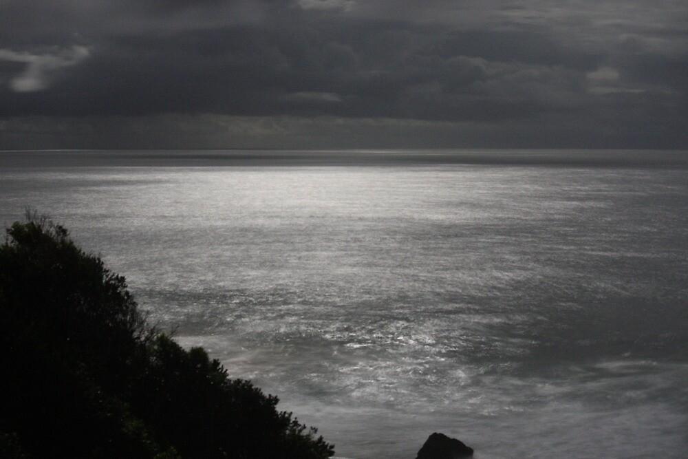 Moon Light, burgess beach by sarahKR