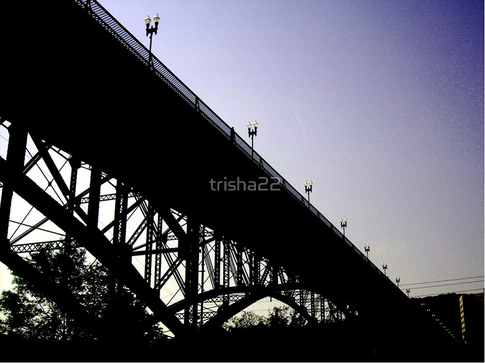 THE BRIDGE  by trisha22