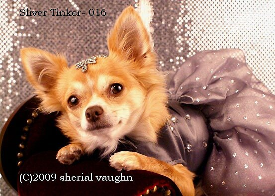 Untitled by Sherial Vaughn