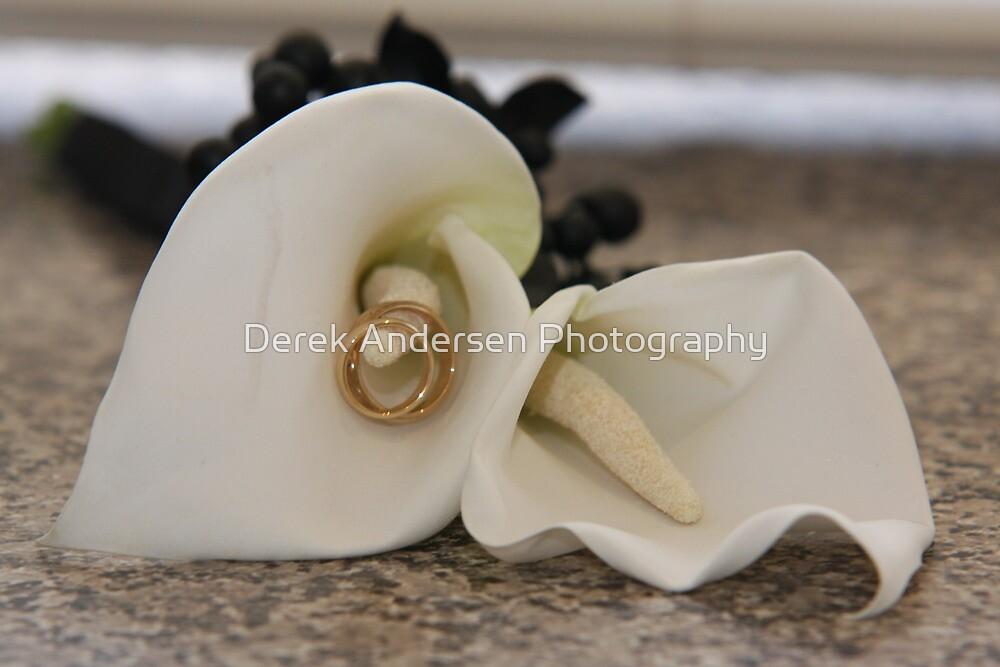 Rings by Derek Andersen Photography