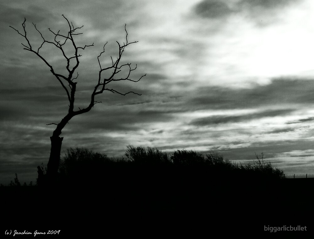 Landscape In Black and White by biggarlicbullet