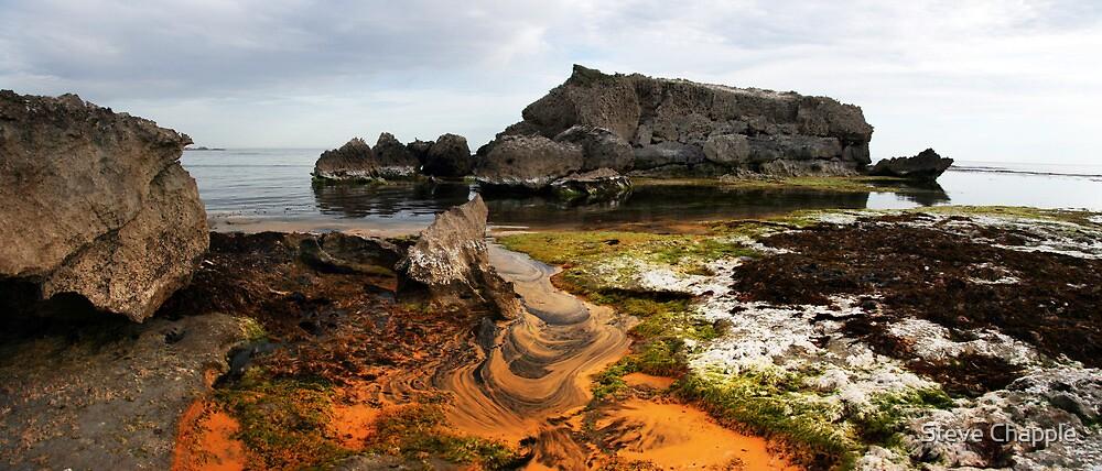 Beach Paint. by Steve Chapple