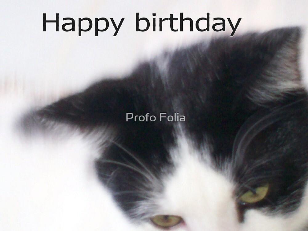 cats eyes birthday card by Profo Folia