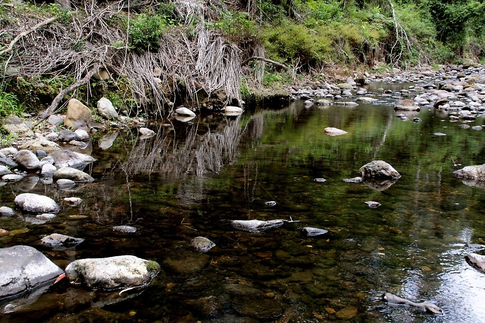 Creek Ilinbah Circuit by smallan