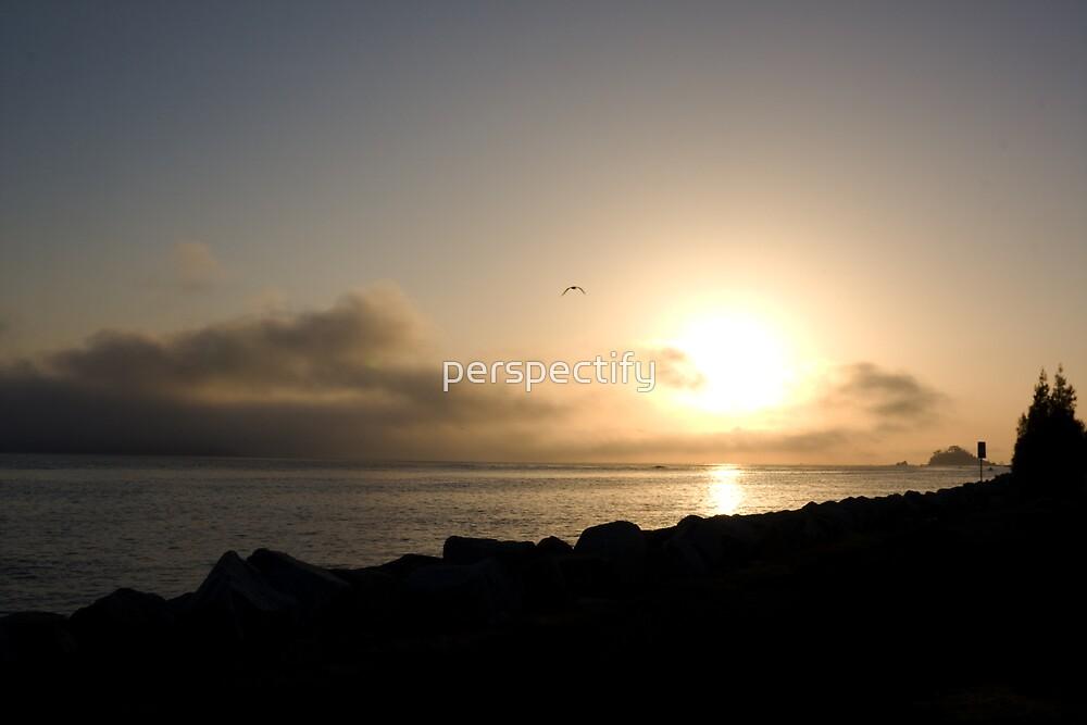 Batemans Bay: Coastal Sunrise by perspectify