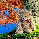 Teddy bear reclining against an autumn tree by Beth Brightman