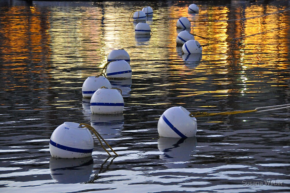 Buoy reflections - St. Martin, DWI by Susana Weber