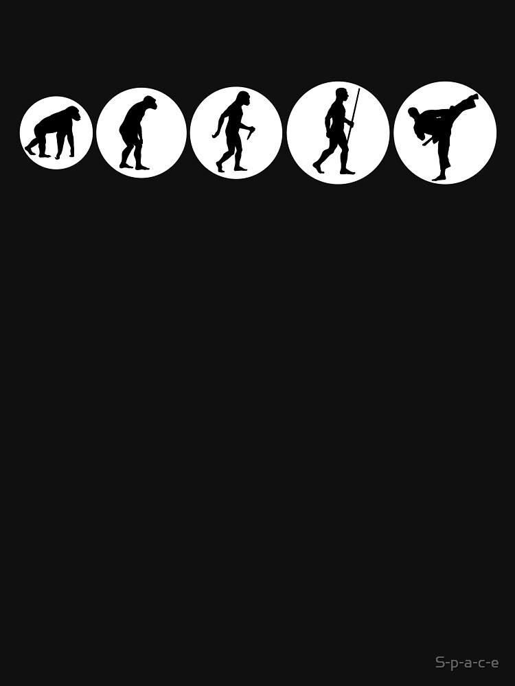 Karate Evolution by S-p-a-c-e