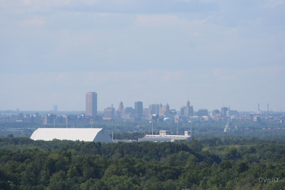 """View of Buffalo and """"The Ralph"""" by DVnJD"""