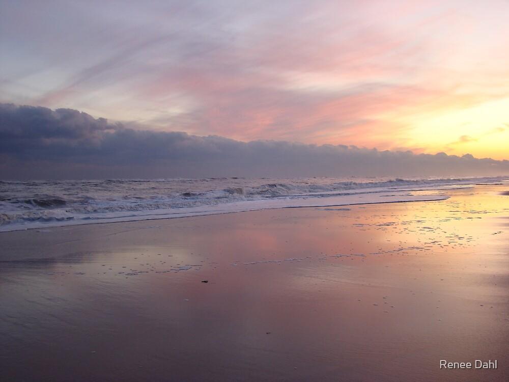 NOVEMBER BEACH, EAST HAMPTON, NY by Renee Dahl