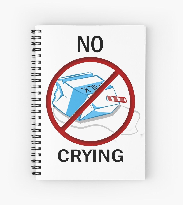dont cry over spilt milk essay