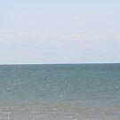 Gradient Waters of Lake Eire by DVnJD